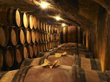 Wooden Barrels with Aging Wine in Cellar, Domaine E Guigal, Ampuis, Cote Rotie, Rhone, France Lámina fotográfica por Per Karlsson