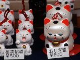 Display of Lucky Cats, Japanese Cultural Icon for Good Fortune, Akasaka, Tokyo, Japan Photographic Print by Nancy &amp; Steve Ross