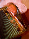 Musician Playing Accordion for Turkish Dancers, Turkey Photographic Print by Darrell Gulin