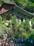 Buddhist Temple in Mountains Above Taegu, South Korea Photographic Print by Dennis Flaherty