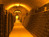 Underground Wine Cellar, Champagne Francois Seconde, Sillery Grand Cru Photographic Print by Per Karlsson