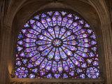 Interior of Notre Dame Cathedral, Paris, France Fotografisk tryk af Jim Zuckerman