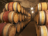Chapoutier Winery's Barrel Aging Cellar with Oak Casks, Domaine M Chapoutier, Tain L'Hermitage Photographic Print by Per Karlsson