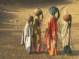 Girls Wearing Sari with Water Jars Walking in the Desert, Pushkar, Rajasthan, India Fotografisk tryk af Keren Su