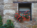 Flowers in a Window In a Tuscan Village, San Quirico d'Orcia, Italy Fotografie-Druck von Dennis Flaherty