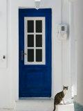 Village Door with Cat, Kokkari, Samos, Aegean Islands, Greece Fotografisk tryk af Walter Bibikow