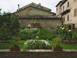 Well and Garden Courtyard, Buonconvento, Italy Photographic Print by Dennis Flaherty