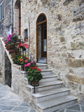 Flower-Lined Stairway, Petroio, Italy Photographic Print by Dennis Flaherty
