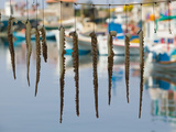 Fishing Port, Lesvos, Mithymna, Northeastern Aegean Islands, Greece Fotografie-Druck von Walter Bibikow