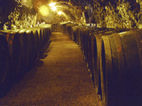 Wine Cellar with Tunnels of Wooden Barrels and Tokaj Wine, Royal Tokaji Wine Company, Mad, Hungary Photographic Print by Per Karlsson