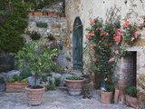 Potted Plants Decorate a Patio in Tuscany, Petroio, Italy Photographic Print by Dennis Flaherty