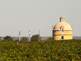 Tower and Flags of Chateau Latour Vineyard in Pauillac, France Photographic Print by Per Karlsson