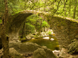 Genoan Bridge in Vegetation of Gorges De Spelonca, Ponte De Zaglia, Corsica, France Fotografie-Druck von Trish Drury