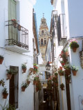 Calleja De Las Flores (Flower Alley), Spain Photographic Print by Lynn Seldon