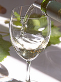 Glass of White Wine, Chateau Belgrave, Haut-Medoc, Grand Crus Classee, France Photographie par Per Karlsson