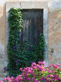 Detail of Old House, Assos, Kefalonia, Ionian Islands, Greece Fotografisk tryk af Walter Bibikow