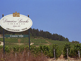 Sign for Domaine Laroche and the Les Clos Grand Cru Vineyard, Chablis, France Photographic Print by Per Karlsson