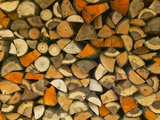 Stacked Firewood, Lithuania Photographic Print by Keren Su