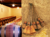 Barrel Cellar for Aging Wines in Oak Casks, Chateau La Grave Figeac, Bordeaux, France Photographic Print by Per Karlsson