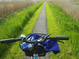 Bicycle Trail, Kinderdijk, Netherlands Photographic Print by Keren Su
