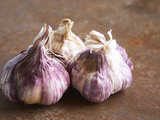 Fresh Violet and White Garlic, Clos Des Iles, Le Brusc, Cote d'Azur, Var, France Photographic Print by Per Karlsson