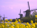 Windmills Along the Canal in Kinderdijk, Netherlands Photographic Print by Keren Su