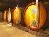 Wine Cellar and Oak Casks, Champagne Jacquesson in Dizy, Vallee De La Marne, Ardennes, France Photographic Print by Per Karlsson
