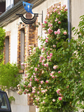 House with Rose Bushes and Wrought Iron Sign, Hautvillers, Vallee De La Marne, Champagne, France Photographic Print by Per Karlsson