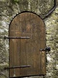 Detail of Old Wooden Door in Stone Wall, Tallinn, Estonia Photographic Print by Nancy & Steve Ross