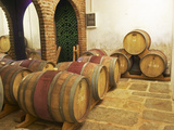 Barrel Aging Cellar, Vinedos Y Bodega Filgueira Winery, Cuchilla Verde Photographic Print by Per Karlsson