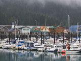 Harbor in the Coastal Town of Seward, Alaska, USA Photographic Print by Dennis Flaherty