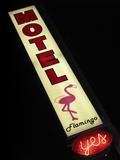 Flamingo Motel Sign, Coeur d'Alene, Idaho, USA Photographic Print by Nancy & Steve Ross