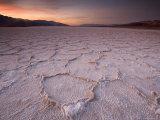 Pressure Ridges in the Salt Pan Near Badwater, Death Valley National Park, California, USA Stampa fotografica di Darrell Gulin
