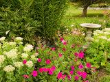 Birdbath and Flowers, Oakland House Seaside Resort, Brooksville Fotografie-Druck von Jerry & Marcy Monkman