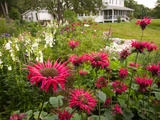 Flower Garden, Oakland House Seaside Resort, Brooksville Photographic Print by Jerry & Marcy Monkman