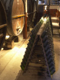 Oak Aging Vats and Pupitres for Fermenting Sparkling Wine, Bodega Pisano Winery, Progreso, Uruguay Photographie par Per Karlsson
