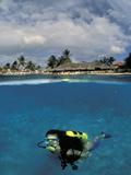Woman Scuba Diving, Bonaire, Caribbean Photographic Print by Amos Nachoum