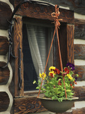 Flower Basket Outside Window of Log Cabin, Fort Boonesborough, Kentucky, USA Photographic Print by Dennis Flaherty