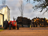 Farm with Old Red Tractor and Firewood, Montevideo, Uruguay Photographic Print by Per Karlsson