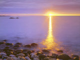 Sunrise on Fog and Shore Rocks on the Atlantic Ocean, Acadia National Park, Maine, USA Photographic Print by Christopher Talbot Frank