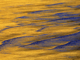 Sunshine Colors Waves off Torrey Pines Cliffs, La Jolla, California, USA Photographic Print by Arthur Morris