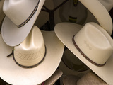 Rack with Assortment of Stylish Mexican Hats, Puerto Vallarta, Mexico Photographic Print by Nancy & Steve Ross