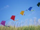 John & Lisa Merrill - Kites on the Beach, Long Beach, Washington, USA - Fotografik Baskı