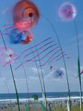 Kites Spinning, Washington State Kite Festival, Long Beach, Washington, USA Photographic Print by John & Lisa Merrill