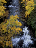 Autumn, Ontonogan River, Upper Peninsula, Michigan, USA Photographic Print by Mark Carlson