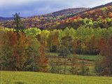Autumn Tree Colors and Lone Horse in the Green Mountains, Vermont, USA Photographic Print by Dennis Flaherty