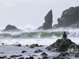 Beach at Lappish, Olympic National Park, Washington, USA Photographic Print by Charles Sleicher