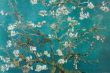 花咲くアーモンドの枝 1890年(サン・レミ) ポスター : フィンセント・ファン・ゴッホ