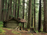 Rainforest and Sol Duc Shelter, Sol Duc Valley, Olympic National Park, Washington, USA Photographic Print by Jamie &amp; Judy Wild