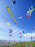 Kites on the Beach, Long Beach, Washington, USA Photographic Print by John &amp; Lisa Merrill